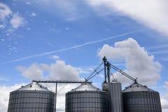 Несколько больших стальных аграрных силосохранилищ хранения используемых для обрабатывать землю стоковая фотография rf