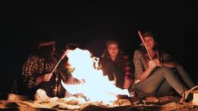 Несколько девушек сидят огнем на ноче и жарят сосиски Обсудите и приведите переговор Придите на кампанию сток-видео