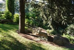 Несколько малых каменных валунов на поле высокого хвойного дерева против предпосылки зеленых декоративных кустарников Стоковые Изображения