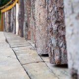 Несколько видов древесины в ряд Стоковые Изображения RF