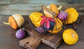 Несколько декоративных тыквы и patissons, и смоквы Стоковая Фотография