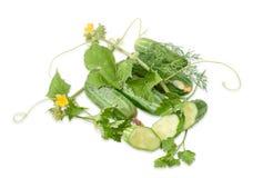Несколько огурцов и стержень с листьями и цветком и зелеными цветами Стоковая Фотография