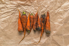 Несколько пакостных морковей на скомканной бумаге Стоковые Изображения RF