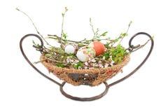 Несколько пасхальных яя на ветвях с листьями и цветками Стоковые Фото