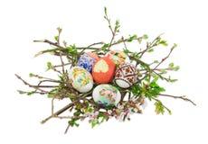 Несколько различных пасхальных яя на ветвях с листьями и цветком Стоковые Изображения