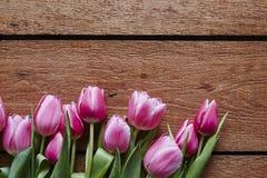 Несколько тюльпанов в одичалом настоящем моменте дня валентинок смешивания Стоковое фото RF