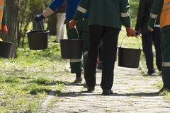 Несосредоточенные садовничая работники обслуживания идя в далекое с ведрами с водой к земле моча весны и деревьями на солнечном д стоковые изображения rf