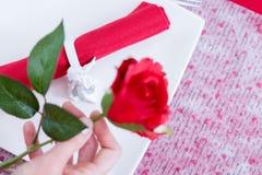 Несосредоточенная красная роза в руке женщины Стоковая Фотография RF