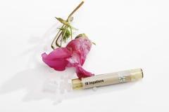 Нетерпеливые цветок и трубка с Bach цветут выход запаса (glandulifera Impatiens) Стоковое Фото