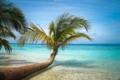 Нетронутый тропический пляж Стоковые Изображения