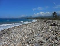 Нетронутый Uncared-для пляжа стоковые фото