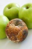 неудача яблока Стоковая Фотография RF