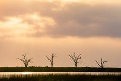 Неурожайный восход солнца Стоковое Фото