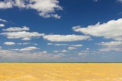 неусидчивое море Стоковое Изображение