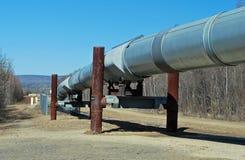 нефтепровод Аляски стоковые фото