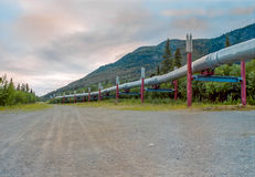 Нефтепровод Аляски в лете стоковое фото rf