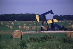 Нефтяная скважина в поле сена Стоковые Фотографии RF