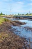 Нефтяное пятно Стоковое Изображение
