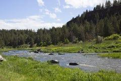 Нечестное река на парке штата утеса Смита Стоковое фото RF