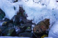 Не-замерзая весна на территории ключа Gremyachy стоковые фотографии rf