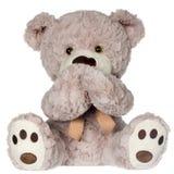 Не поговорите никакого злого медведя Стоковая Фотография