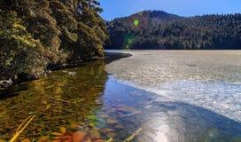 Не совершенно замороженное озеро Стоковые Фото