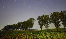 Нива на ноче и звёздном небе Стоковая Фотография RF