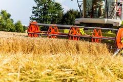 Нива с пшеницей на сборе Стоковые Изображения RF