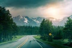 нигде дорога к Дорога леса после дождя стоковое фото rf