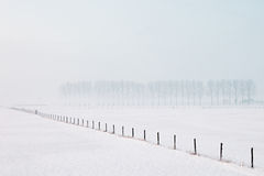 нидерландское ooij Стоковое Изображение RF