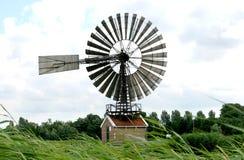 Нидерланды стана de hercules подняли Стоковое Изображение