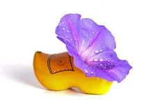 Нидерланды цветка clog Стоковые Изображения RF