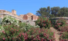 Нижний взгляд купола цитадели музея истории St Tropez морского тонуть в цветках стоковые изображения rf