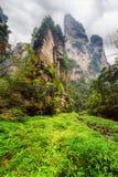 Нижний взгляд фантастических утесов среди древесных зеленей и заводей Стоковые Фото