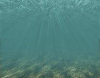 нижний океан Стоковое Изображение
