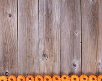 Нижняя граница украшений тыквы праздника осени на деревенском wo Стоковая Фотография RF