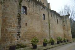 Нижняя съемка замка Sajazarra эффектно сохранила бортовую съемку Архитектура, искусство, история, перемещение стоковое изображение rf