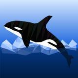 Низкая поли дельфин-касатка Стоковое фото RF