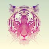 Низкая поли иллюстрация тигра вектора Стоковая Фотография RF