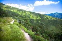 Низкие горы Tatras, Словакия Стоковая Фотография RF