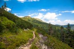 Низкие горы Tatras, Словакия Стоковые Фото