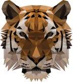 Низкий поли тигр иллюстрация вектора