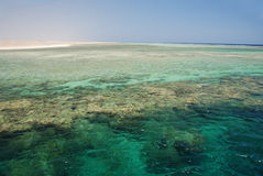 низкий прилив рифа Стоковые Фото