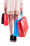 Низкий раздел хозяйственных сумок нося молодой стильной девушки стоковое изображение rf