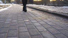 Низкий угол ботинок моды высокой пятки с девушкой идя вдоль молы около красивого озера в зиме 4K видеоматериал