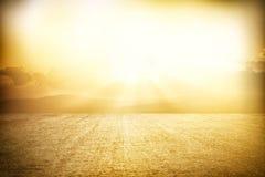 Низкий угол сухой травы глобальное потепление принципиальной схемы Стоковое Изображение RF