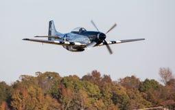 Низкий уровень летания бойца мустанга P-51 над деревьями стоковые изображения rf