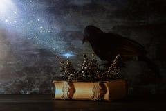низкое ключевое изображение красивых ферзя/кроны короля и черной вороны период фантазии средневековый Селективный фокус Стоковые Фотографии RF