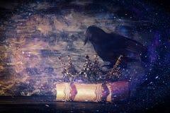 низкое ключевое изображение красивых ферзя/кроны короля и черной вороны период фантазии средневековый Селективный фокус Стоковая Фотография RF
