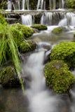 низкопробный водопад реки стоковое фото rf